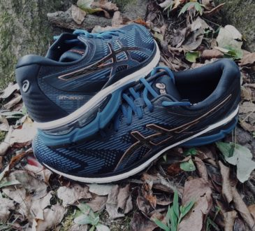ASICS GT 2000 8 FEATURE